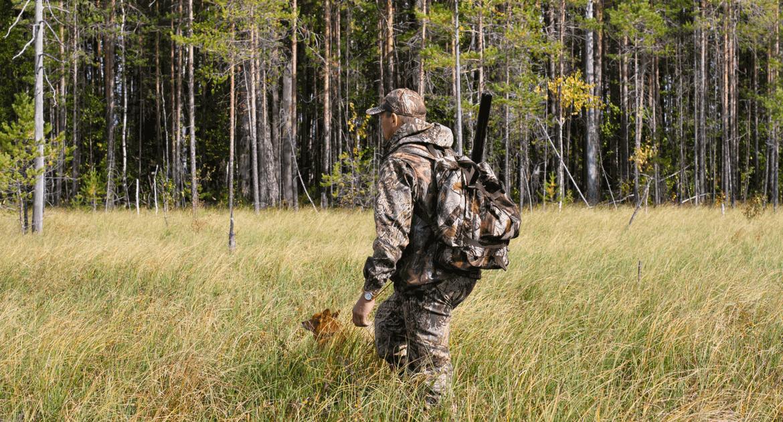 Csapda a vadászatban? Tilos vagy szabad?
