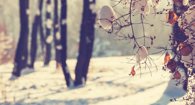 Téli kirándulóhelyek Nógrád megyében
