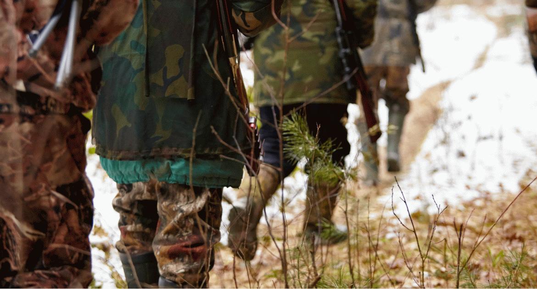 Újévi vadászat – ismerd meg az erdőt