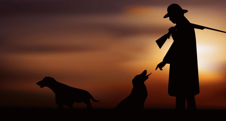 A vadász legjobb barátja: az agár
