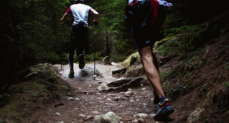 Sport hegyen, völgyön: A tájfutásról kezdőknek