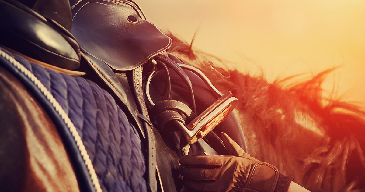 lovaglás kezdőknek